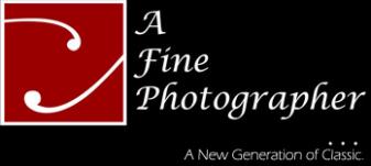 A Fine Photographer